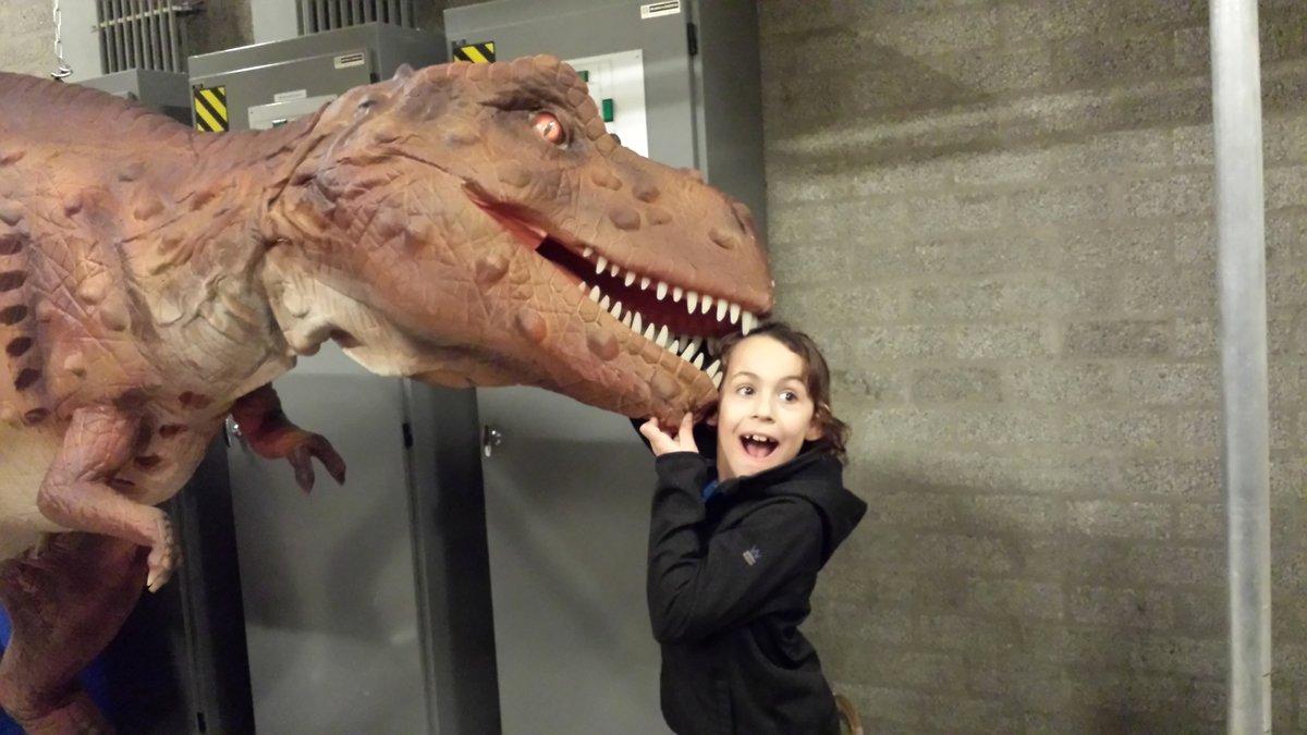 Bedrijf 09-02-1015 Dinodroom